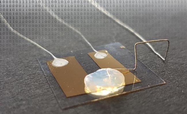 德国开发出世界最小单原子晶体管