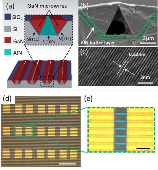 硅基氮化镓微丝阵列用于紫外光电探测